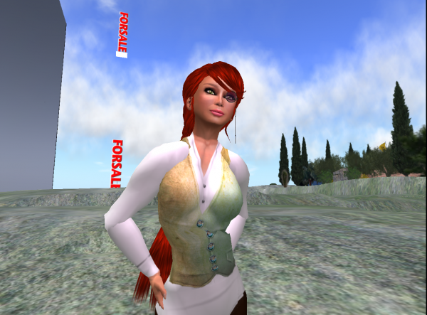 Image: Second Life Land for Sale